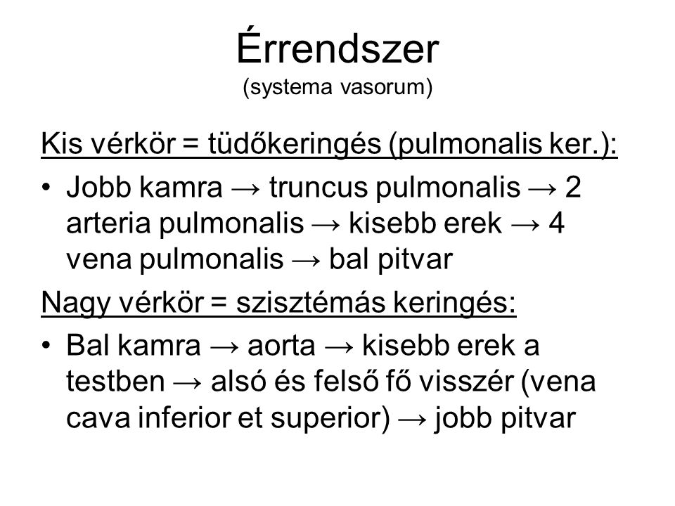 Érrendszer (systema vasorum)