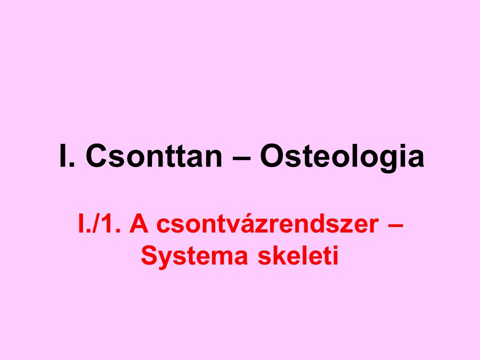 I. Csonttan – Osteologia