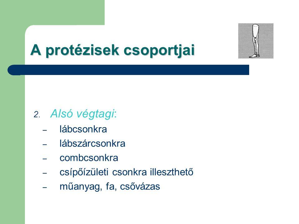 A protézisek csoportjai