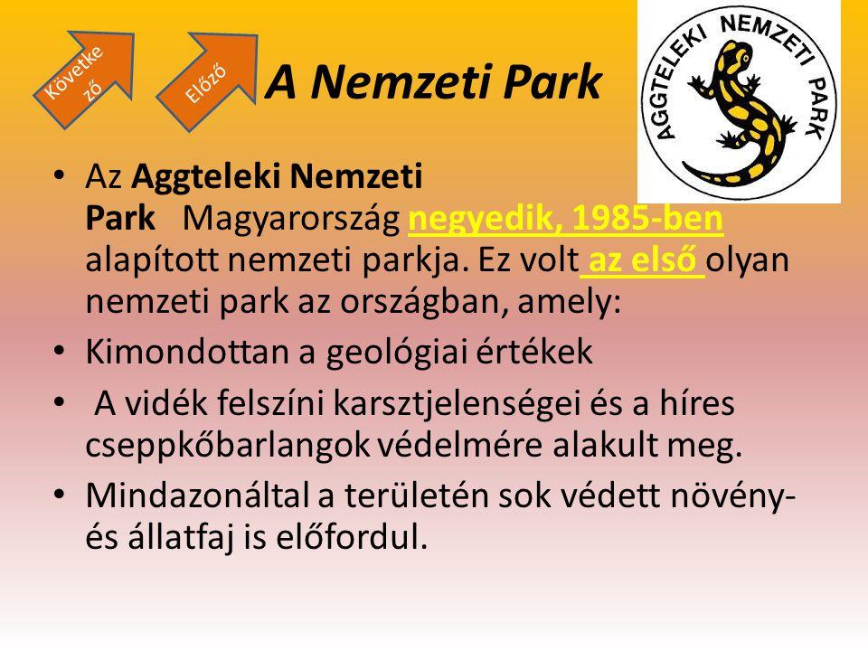 Következő A Nemzeti Park. Előző.