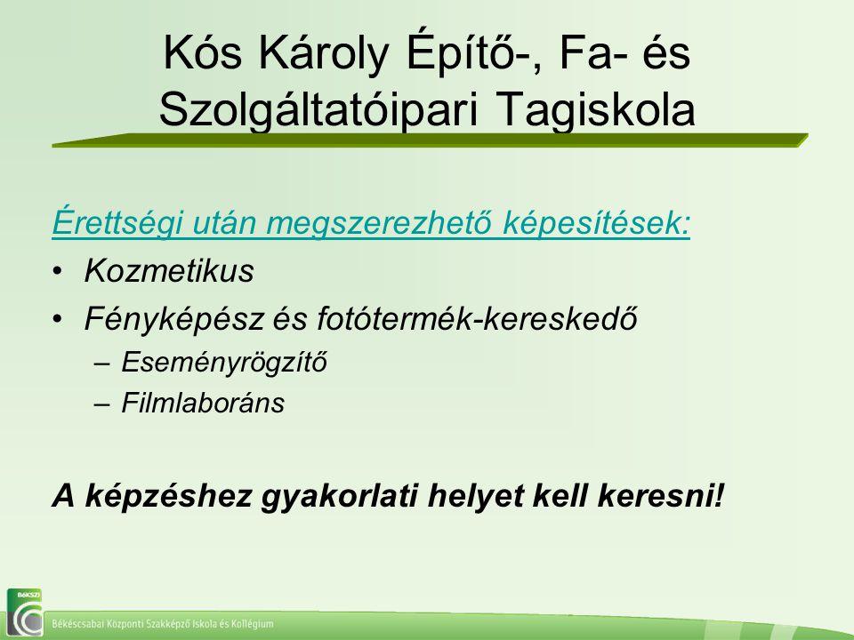 Kós Károly Építő-, Fa- és Szolgáltatóipari Tagiskola