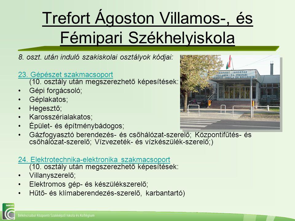 Trefort Ágoston Villamos-, és Fémipari Székhelyiskola