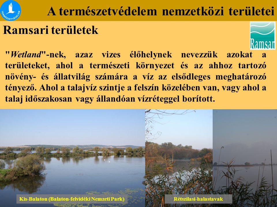 Kis-Balaton (Balaton-felvidéki Nemzeti Park) Rétszilasi-halastavak