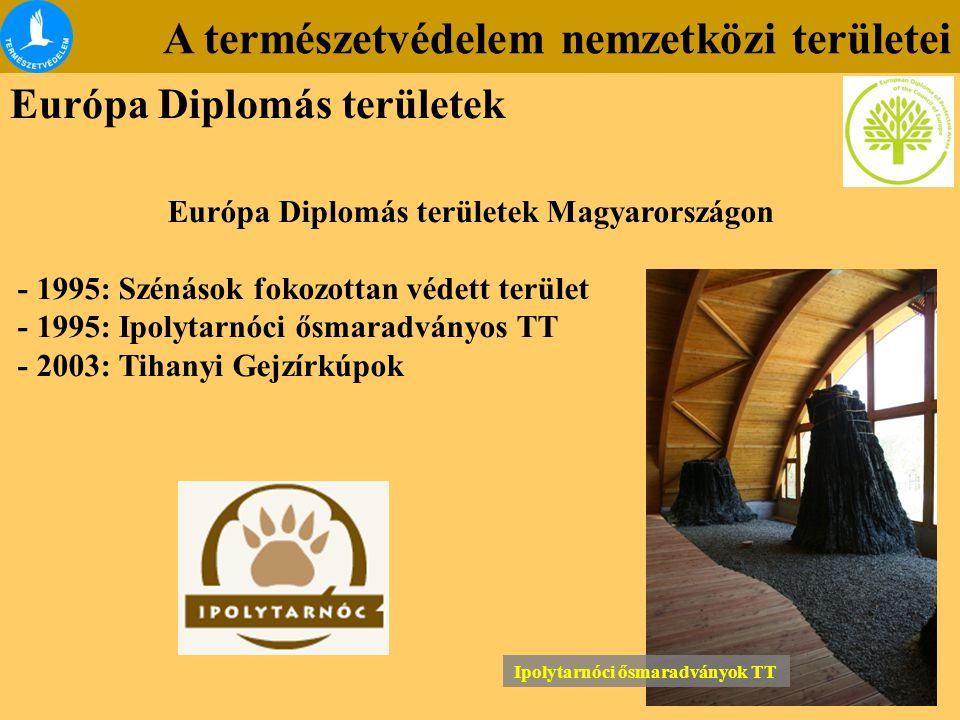 Európa Diplomás területek Magyarországon Ipolytarnóci ősmaradványok TT