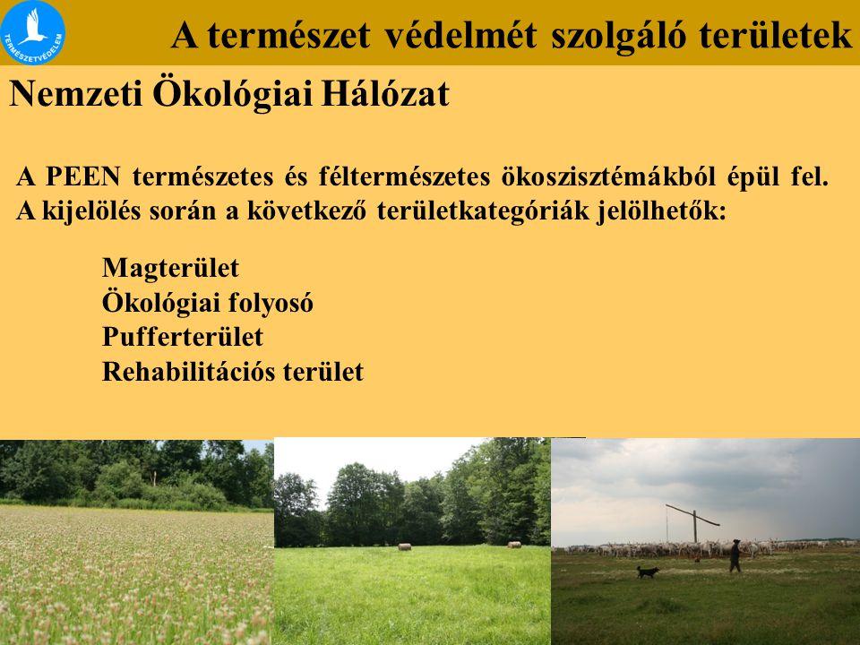 A természet védelmét szolgáló területek