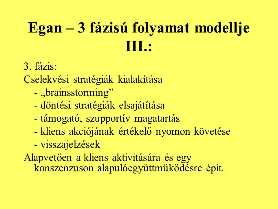 Egan – 3 fázisú folyamat modellje III.: