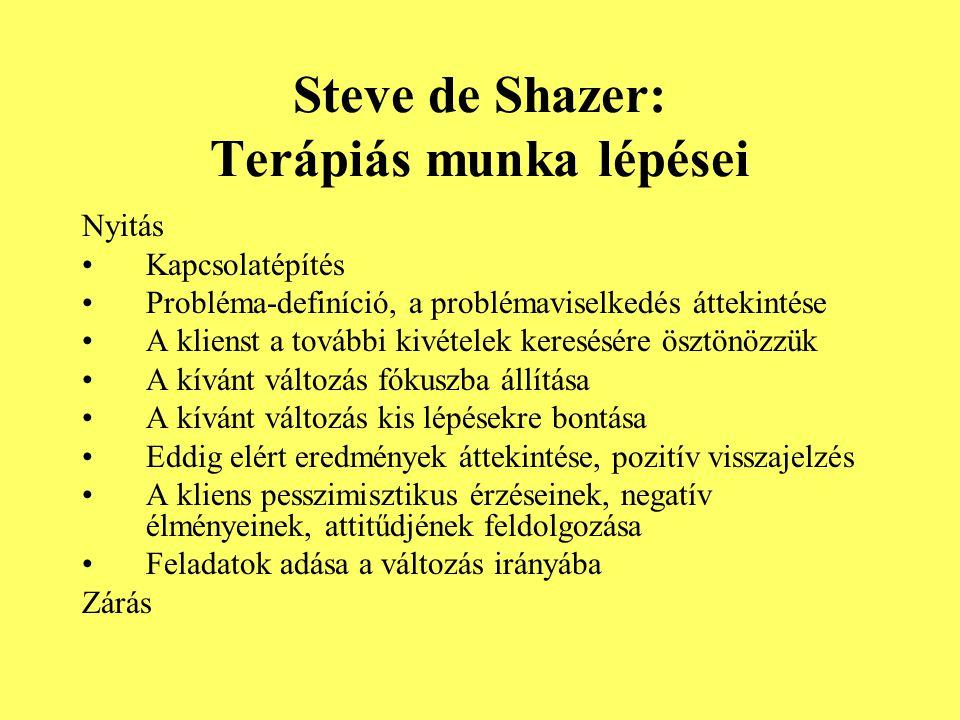 Steve de Shazer: Terápiás munka lépései