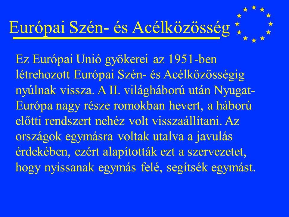 Európai Szén- és Acélközösség