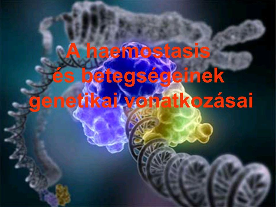 A haemostasis és betegségeinek genetikai vonatkozásai
