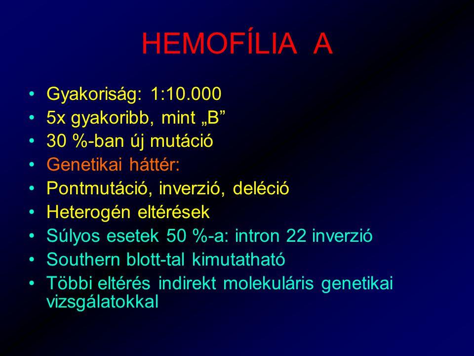 """HEMOFÍLIA A Gyakoriság: 1:10.000 5x gyakoribb, mint """"B"""