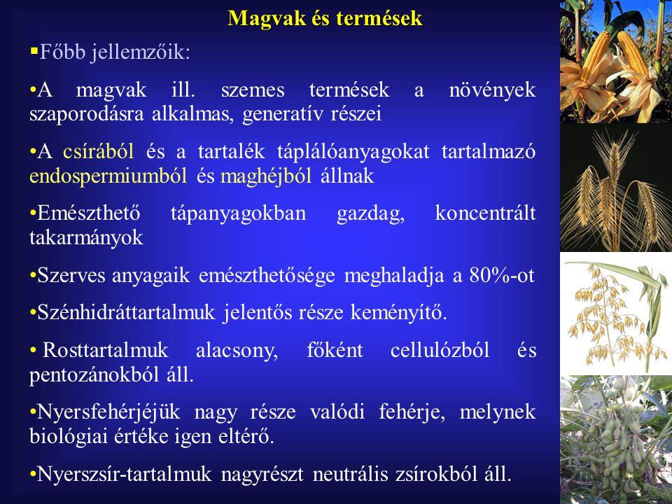 Magvak és termések Főbb jellemzőik: A magvak ill. szemes termések a növények szaporodásra alkalmas, generatív részei.