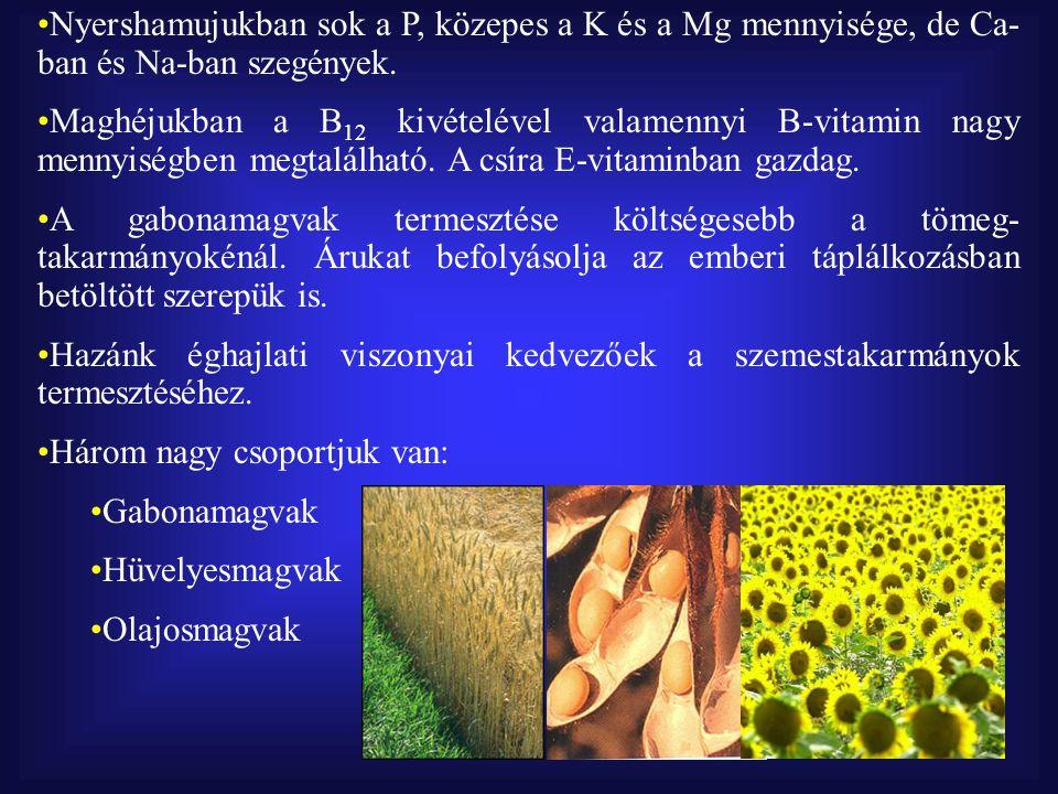 Nyershamujukban sok a P, közepes a K és a Mg mennyisége, de Ca-ban és Na-ban szegények.