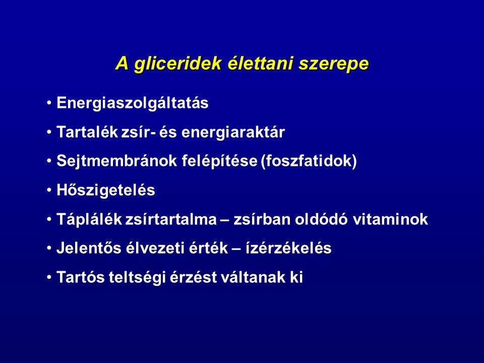 A gliceridek élettani szerepe