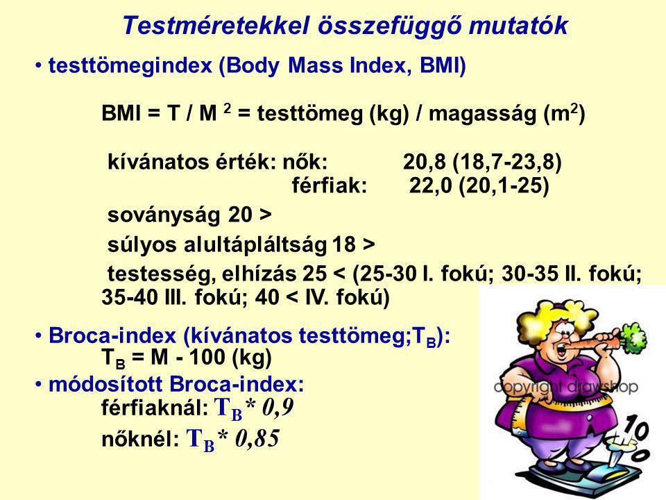 Testméretekkel összefüggő mutatók