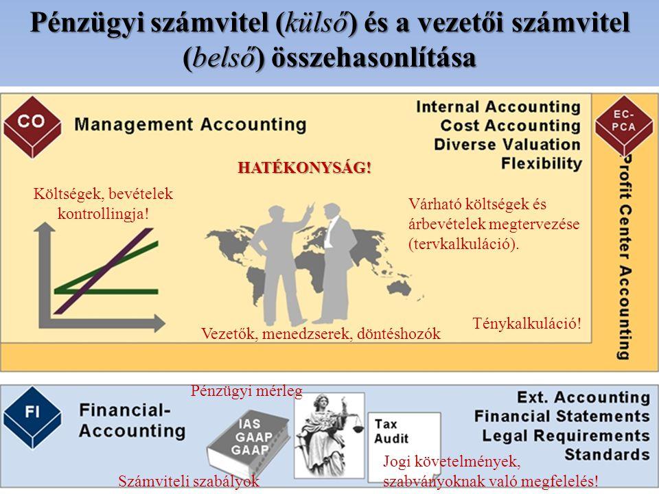 Költségek, bevételek kontrollingja!