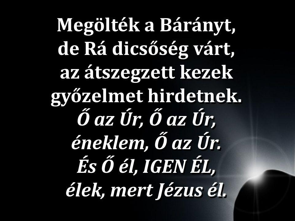 Megölték a Bárányt, de Rá dicsőség várt, az átszegzett kezek győzelmet hirdetnek.