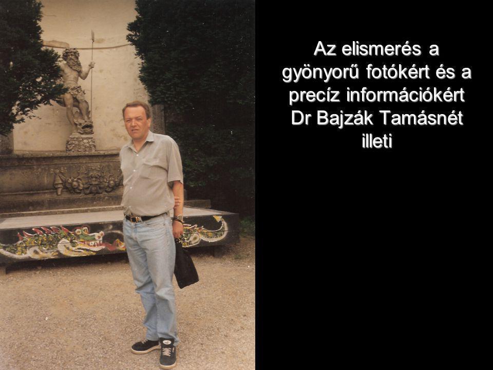 Az elismerés a gyönyorű fotókért és a precíz információkért Dr Bajzák Tamásnét illeti