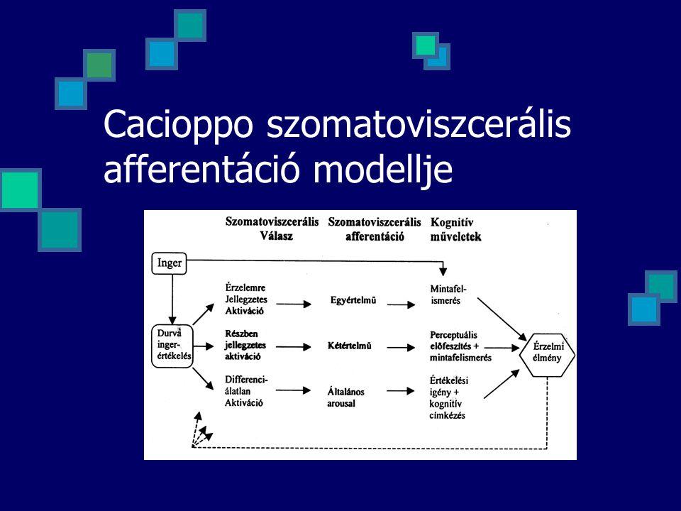 Cacioppo szomatoviszcerális afferentáció modellje