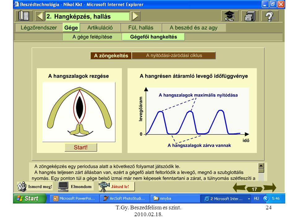 T.Gy. Beszedfelism es szint. 2010.02.18.