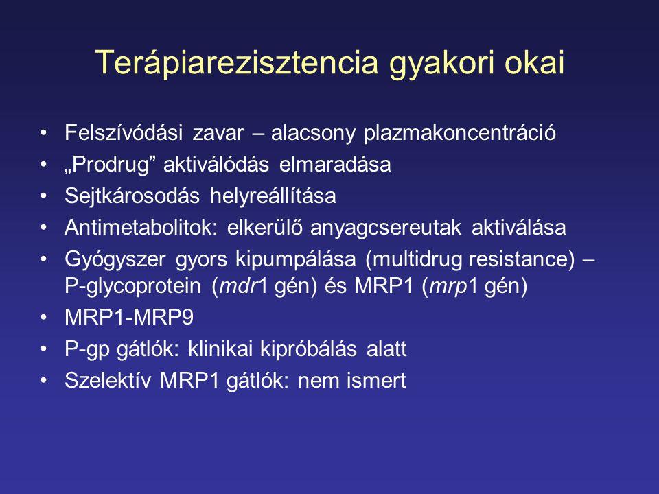 Terápiarezisztencia gyakori okai