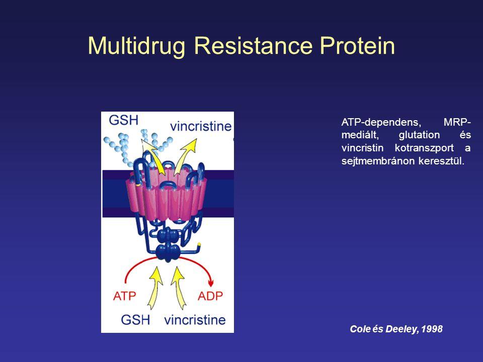 Multidrug Resistance Protein