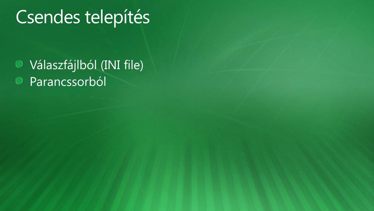 Csendes telepítés Válaszfájlból (INI file) Parancssorból