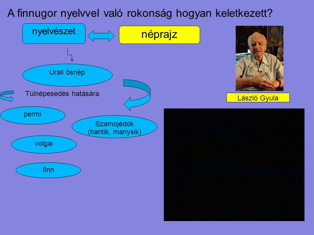 A finnugor nyelvvel való rokonság hogyan keletkezett