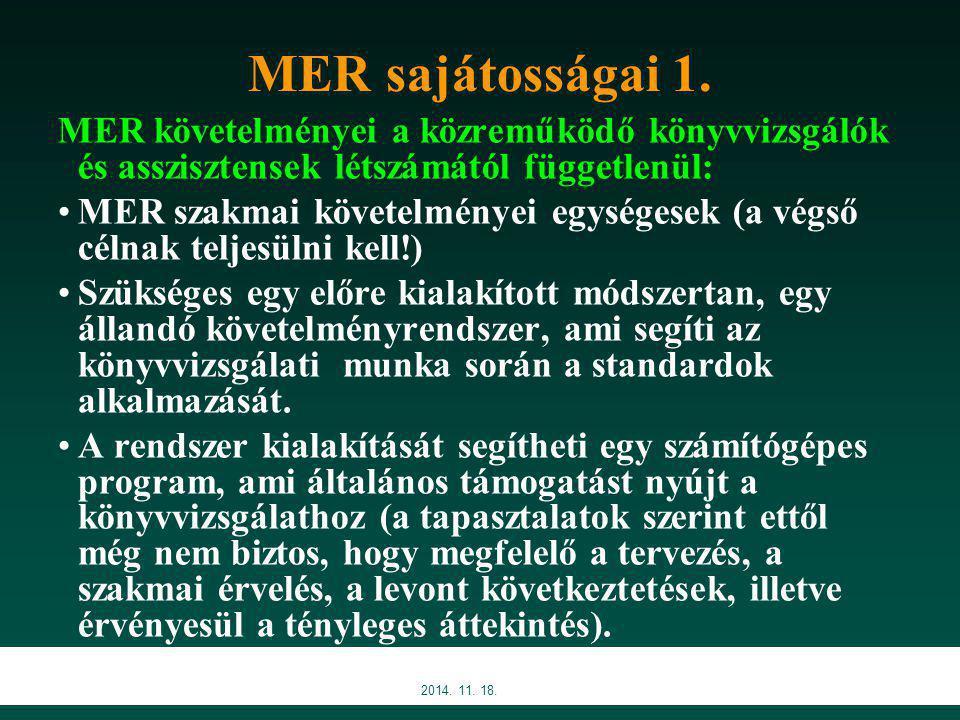 MER sajátosságai 1. MER követelményei a közreműködő könyvvizsgálók és asszisztensek létszámától függetlenül: