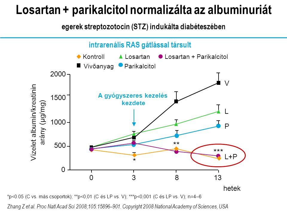 intrarenális RAS gátlással társult A gyógyszeres kezelés kezdete