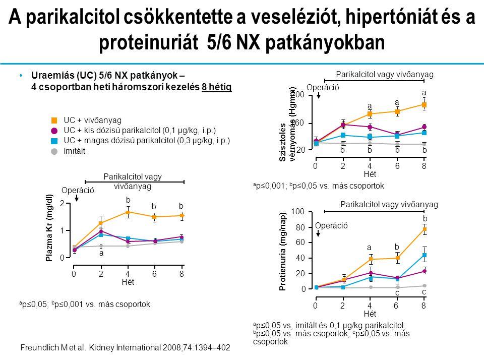 A parikalcitol csökkentette a veseléziót, hipertóniát és a proteinuriát 5/6 NX patkányokban