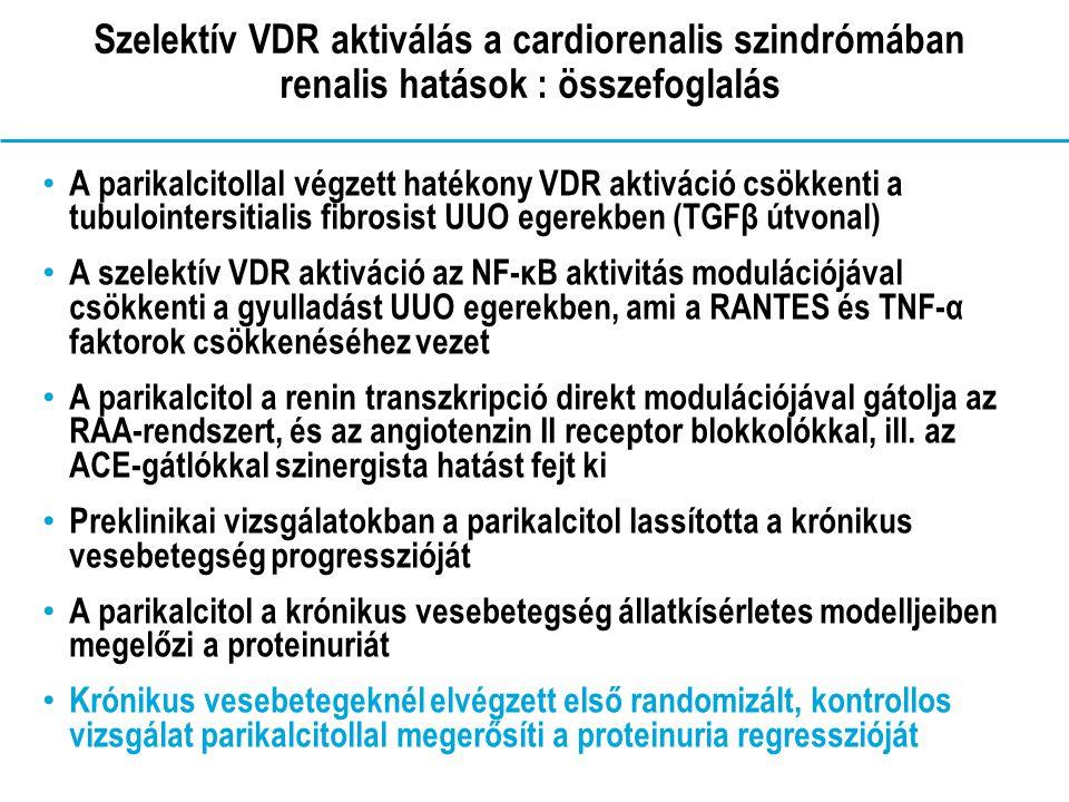 Szelektív VDR aktiválás a cardiorenalis szindrómában renalis hatások : összefoglalás