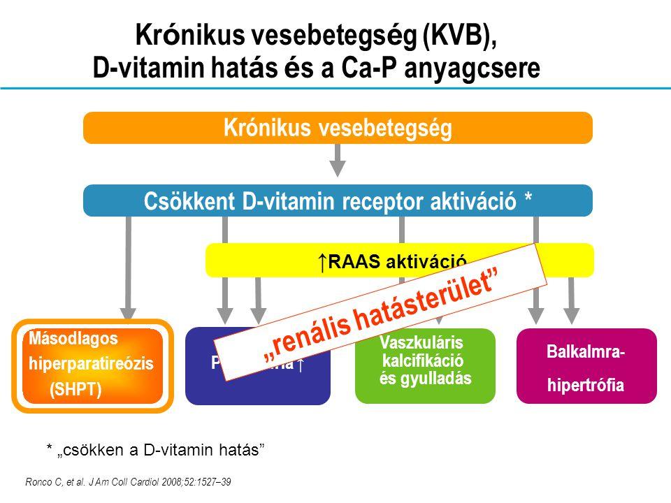 Krónikus vesebetegség (KVB), D-vitamin hatás és a Ca-P anyagcsere