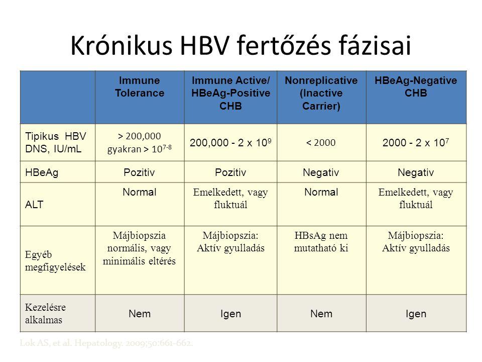 Krónikus HBV fertőzés fázisai