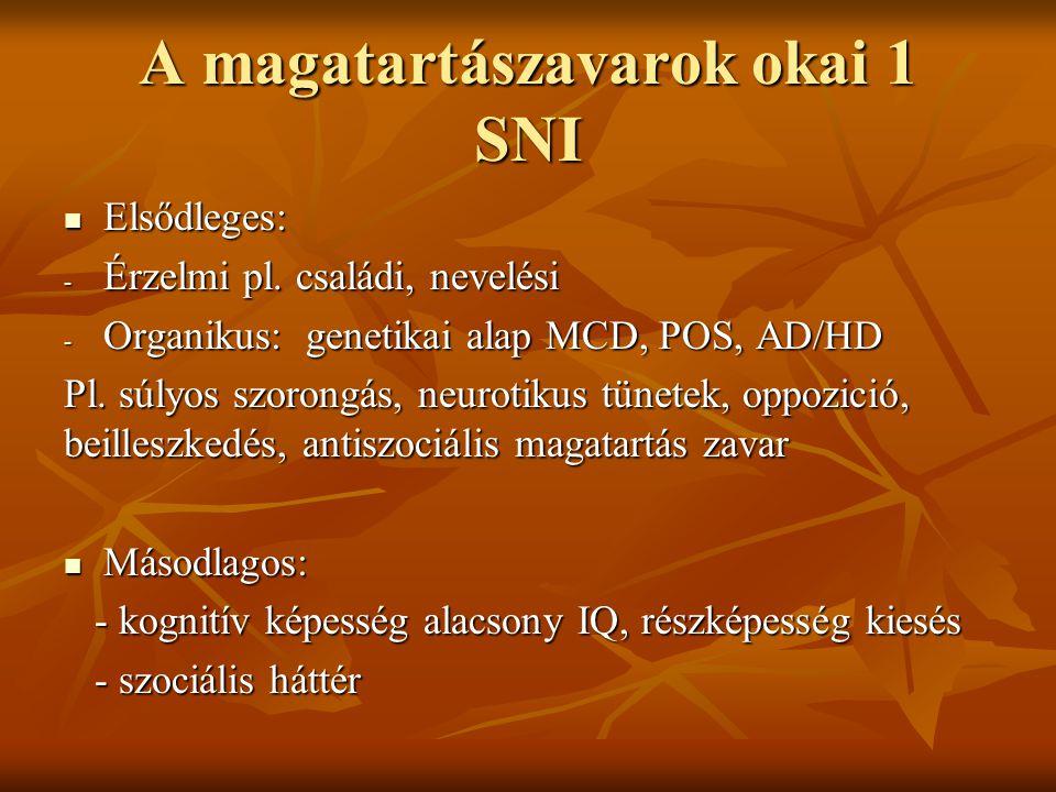 A magatartászavarok okai 1 SNI