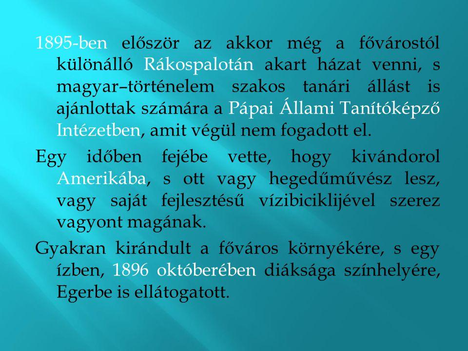 1895-ben először az akkor még a fővárostól különálló Rákospalotán akart házat venni, s magyar–történelem szakos tanári állást is ajánlottak számára a Pápai Állami Tanítóképző Intézetben, amit végül nem fogadott el.