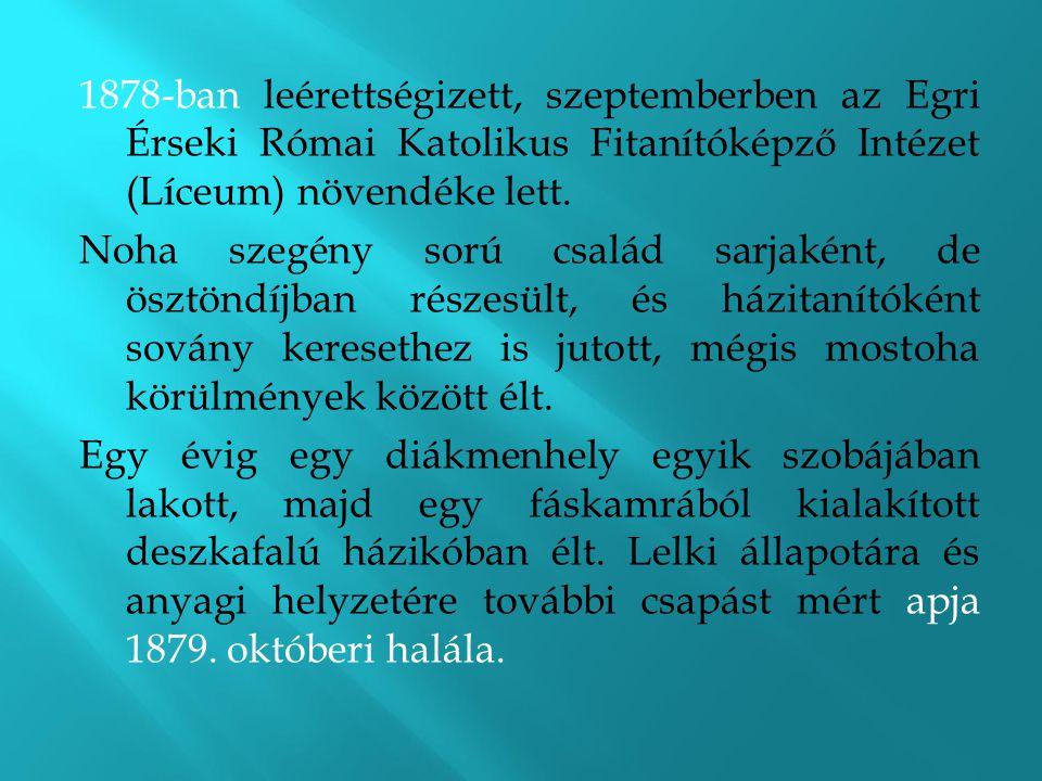 1878-ban leérettségizett, szeptemberben az Egri Érseki Római Katolikus Fitanítóképző Intézet (Líceum) növendéke lett.