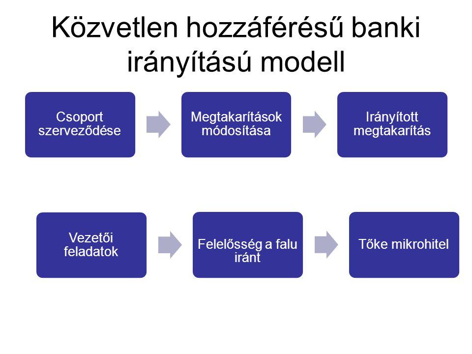 Közvetlen hozzáférésű banki irányítású modell