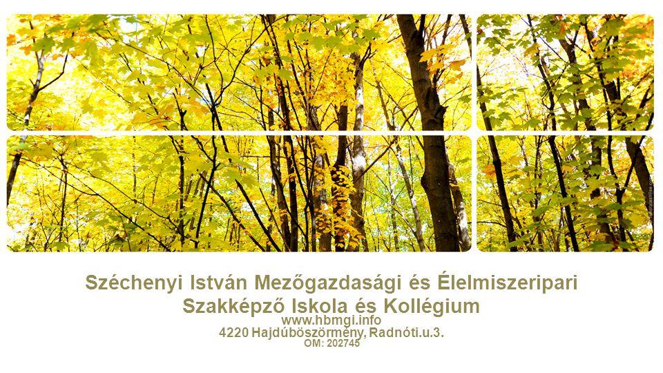 www.hbmgi.info 4220 Hajdúböszörmény, Radnóti.u.3. OM: 202745