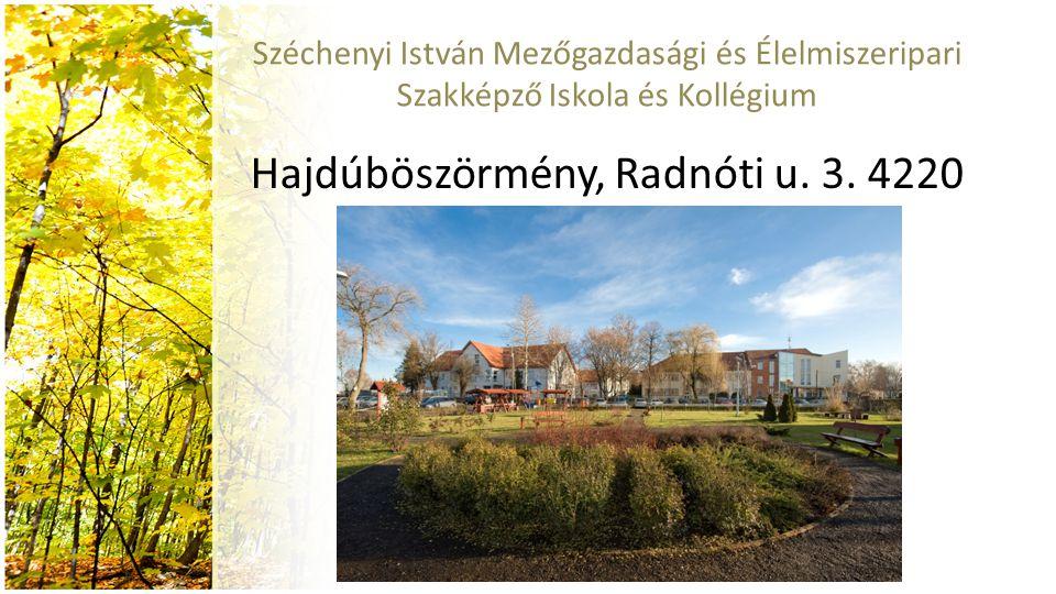 Hajdúböszörmény, Radnóti u. 3. 4220
