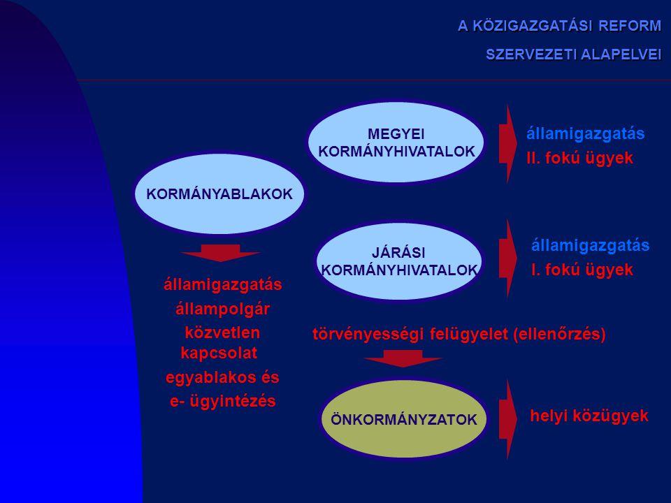 törvényességi felügyelet (ellenőrzés)