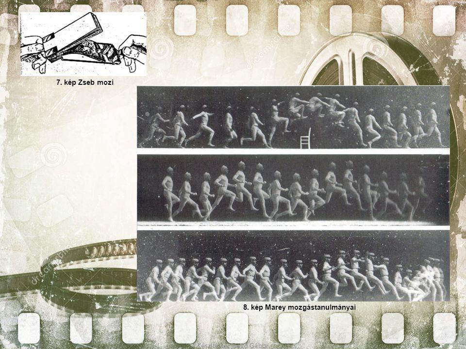 8. kép Marey mozgástanulmányai