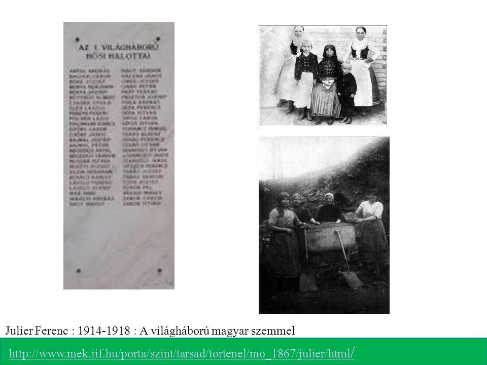 Julier Ferenc : 1914-1918 : A világháború magyar szemmel