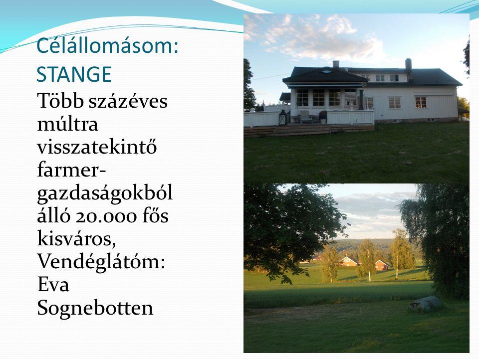 Célállomásom: STANGE Több százéves múltra visszatekintő farmer-gazdaságokból álló 20.000 fős kisváros, Vendéglátóm: Eva Sognebotten.