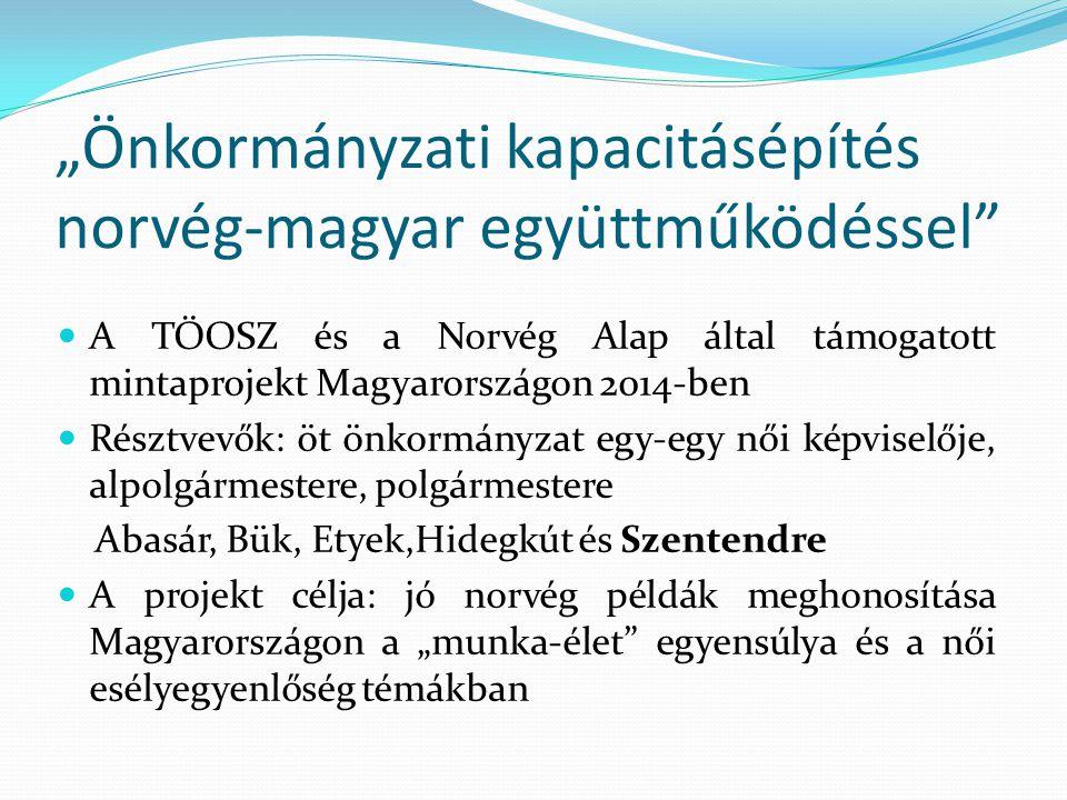 """""""Önkormányzati kapacitásépítés norvég-magyar együttműködéssel"""