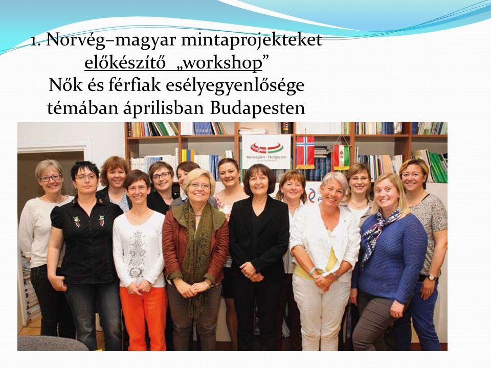 """1. Norvég–magyar mintaprojekteket előkészítő """"workshop"""
