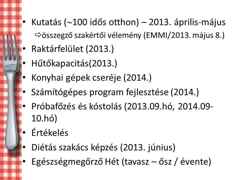 Kutatás (100 idős otthon) – 2013. április-május Raktárfelület (2013.)