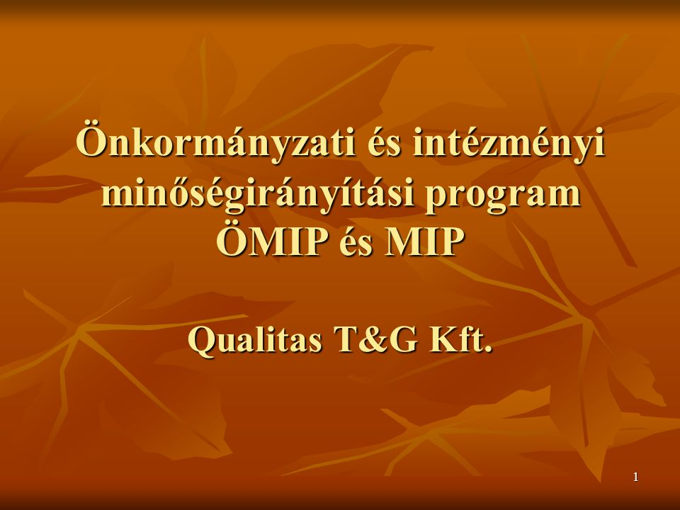 Önkormányzati és intézményi minőségirányítási program ÖMIP és MIP Qualitas T&G Kft.