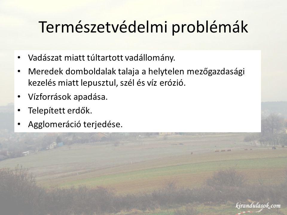 Természetvédelmi problémák