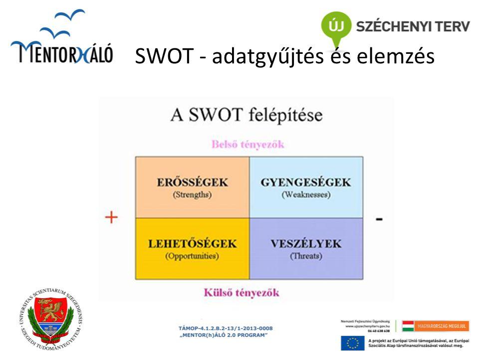 SWOT - adatgyűjtés és elemzés