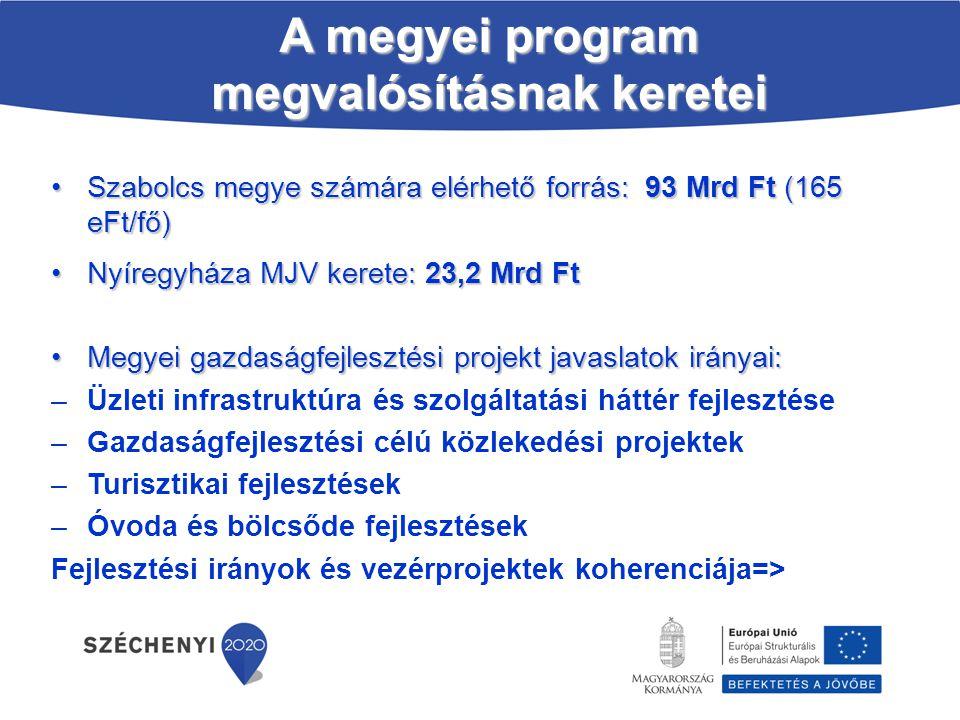 A megyei program megvalósításnak keretei